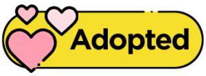 Adopted Badge