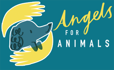 Angels for Animals Logo