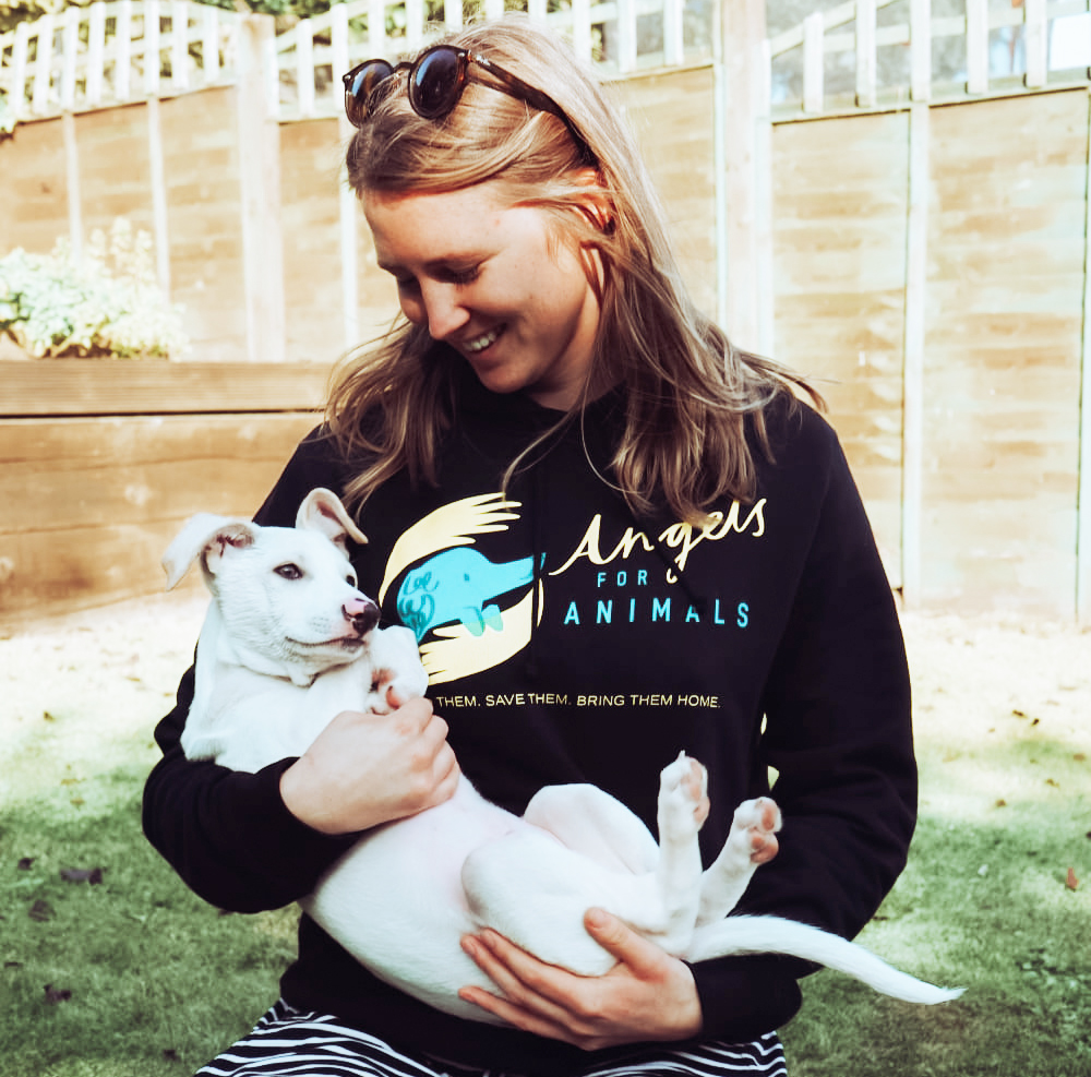 Angels For Animals Dog Rescue